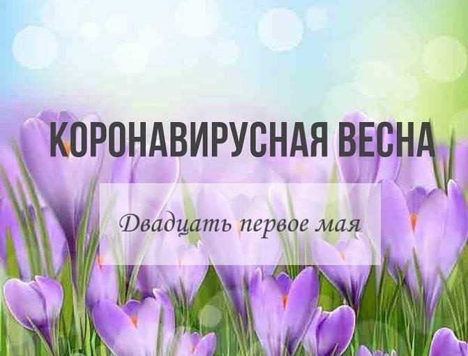Скорее читаем горячие новости сегодняшнего дня ⚡️ #Дневникдистанционки33